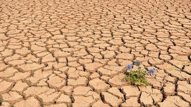 BM: Dünya 3 dereceden fazla ısınmaya doğru gidiyor