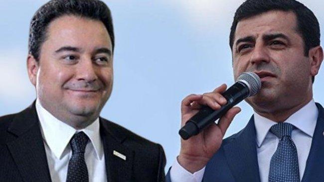Babacan, Selahattin Demirtaş ile ortak görüşünü açıkladı