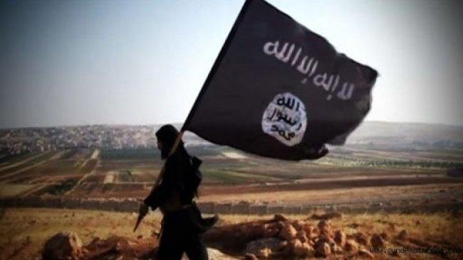 Uluslararası Koalisyon'dan IŞİD raporu: Kürdistani bölgelerdeki hareketliliğin sebebi ne?