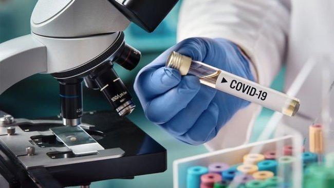 DSÖ'den Wuhan'da koronavirüse dair önemli bulgu