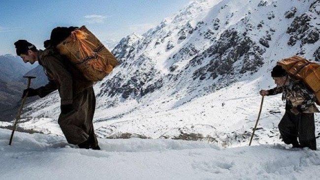 Kürt kolber donarak hayatını kaybetti
