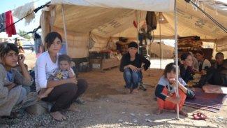 'Şengal halkı çaresizlikten dolayı yurtdışına göç ediyor'