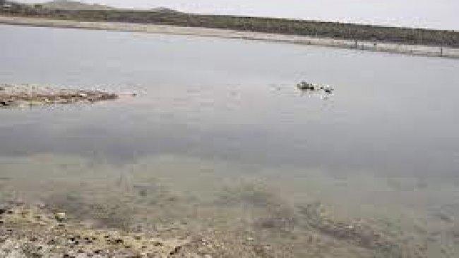 Fırat Nehri'nin suyunun azaltılması Kobanê'de krize yol açtı