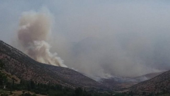 TSK ile PKK arasında şiddetli çatışma
