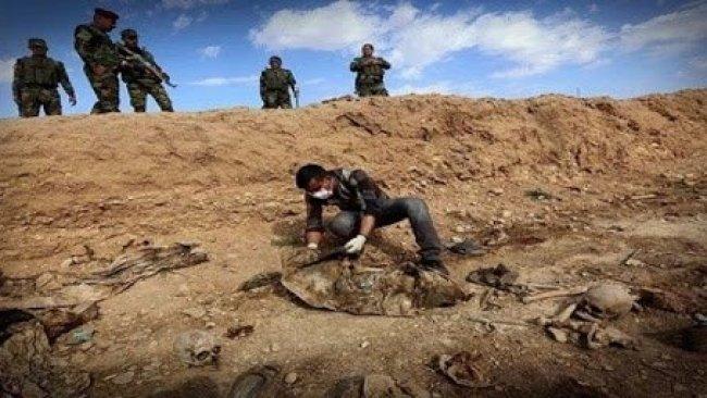 Şengal'de 11 Ezidi'ye ait mezar bulundu