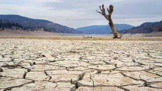 BM: Sıcak hava dalgalarının milyonlarca insan için korkunç sonuçları olabilir