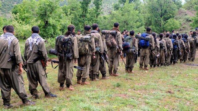 Sefin Dizayi: PKK'nin sorunu PDK ile değil...