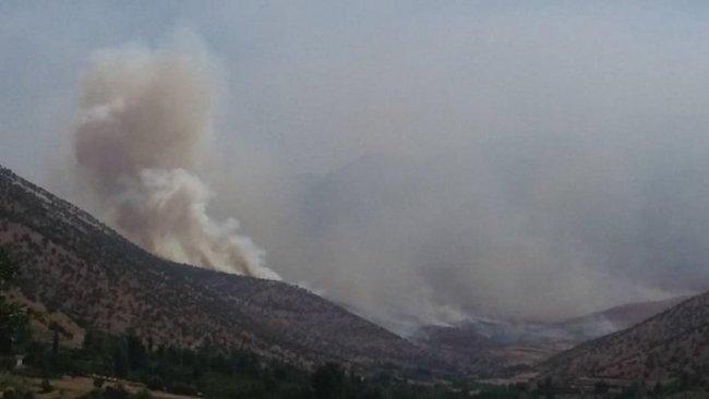 PKK-TSK çatışmaları: Kani Masi'de 15 köyün bağ ve bahçeleri yandı