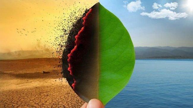 Scientific Reports: Küresel ısınmanın etkisiyle kıyılar çekilecek