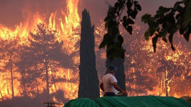 Manavgat Yangını ve Yaklaşan Şiddet Tehlikesi