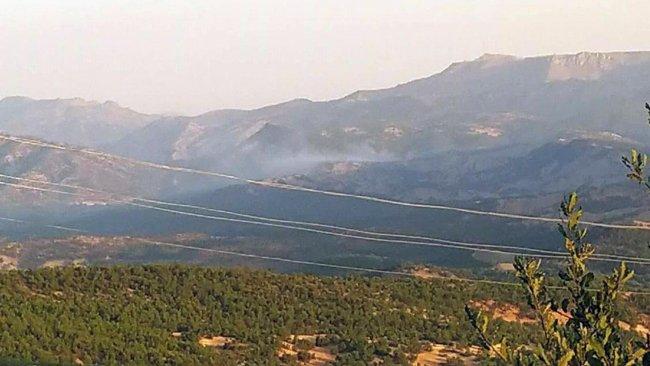 Mardin ve Şırnak'ta ormanlık alanlara girişler yasaklandı