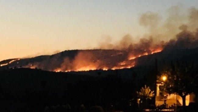 Dersim ve Şırnak'taki orman yangınları için kampanya