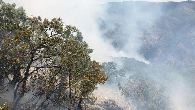 74 baro başkanından Dersim'deki orman yangınına ilişkin çağrı