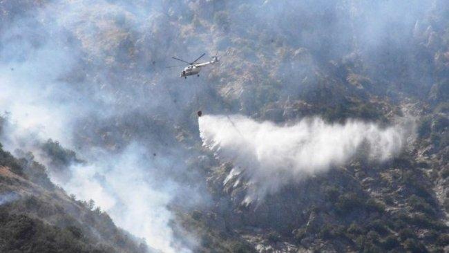 Bitlis'teki orman yangınında 40 hektar alan zarar gördü