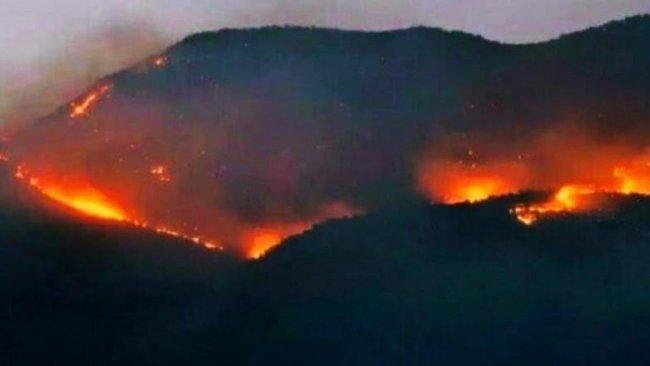 Türkiye Devleti Dersim ve Şırnak'ta yanan ormanlara kimsenin müdahale etmesine izin vermiyor