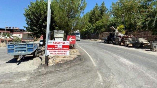 Eruh'ta şarbon tespit edildi: İlçe karantinaya alındı