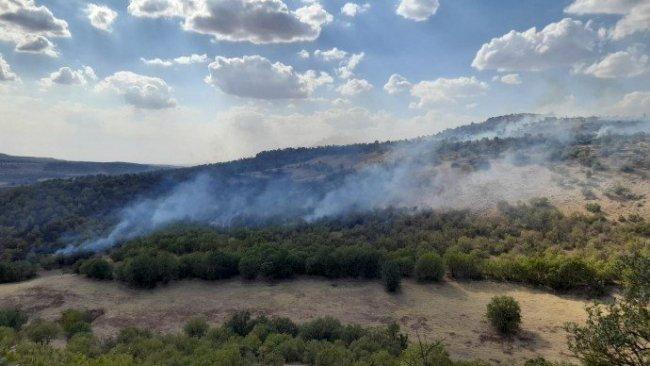 Diyarbakır'da operasyonun ardından orman yangını başladı