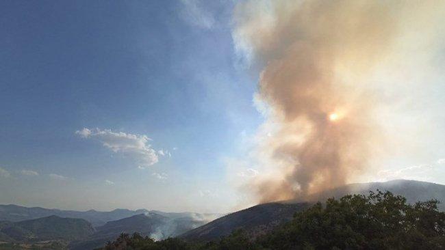 Dersim'de yeniden orman yangını başladı